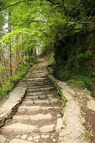 Pathway up the Torc Waterfall Steps on Torc Waterfall Kerry.jpg