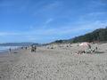 Stinson beach1.JPG