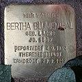 Stolperstein Konstanzer Str 62 (Wilmd) Bertha Blumenthal.jpg