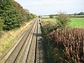 Straight tracks in Shropshire - geograph.org.uk - 588196.jpg