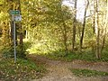 Straussee - Rundweg (Circular Path) - geo.hlipp.de - 29656.jpg