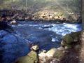 Stream Wilde Sau in Klipphausen.JPG