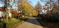 Street in village Ankudinovka.jpg