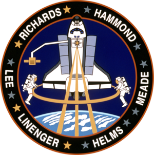 Mark C. Lee - Image: Sts 64 patch