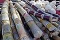 Sugarcane stalks.jpg