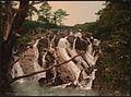 Swallow Falls, Fairy Glen, Bettws-y-Coed (i.e. Betws), Wales-LCCN2001703436.jpg
