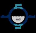 Synantipericlinal.png
