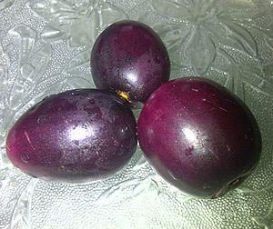 Syzygium cumini - Fruit