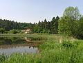 Týnec nad Sázavou, Pecerady, Podhájský Pond.jpg