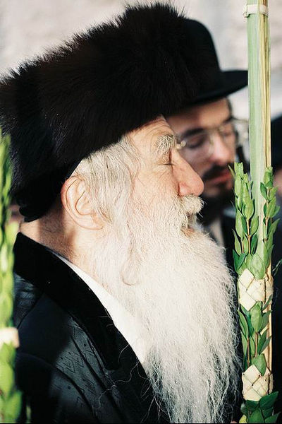 File:THE ARLAU REBBE.jpg