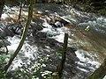 TRILHA ARROIO S. CLARA - panoramio (4).jpg