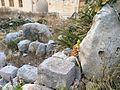 Tal-Qadi Temple, Naxxar 21.jpg