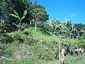 Talaingod-San Fernando Road - panoramio (98).jpg