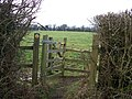 Tasty kissing gate - geograph.org.uk - 1625056.jpg