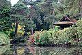 Tatton Park gardens 2009-9.jpg