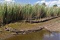 Technisch-biologische Ufersicherung an der Wümme, Versuchsstrecke 3 (50678787952).jpg