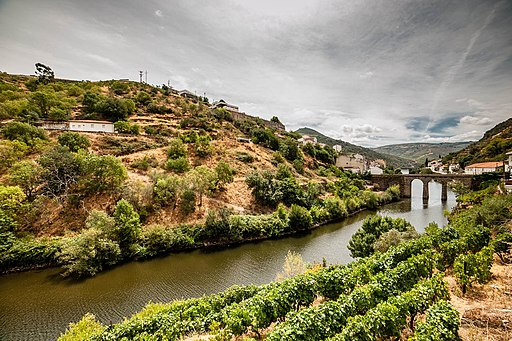 The Douro Valley (10185551276)