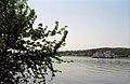 The Mississippi (2538822271).jpg