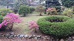 The garden of his father's house-- 2014-05-11 10-34.jpg