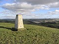 The trig point on Wiltonburn Hill - geograph.org.uk - 340903.jpg