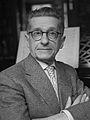 Theo van der Bijl (1962).jpg