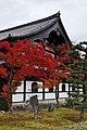 Tofuku-ji (4587238187).jpg