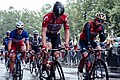 Tour de France 2017 stage 2.jpg