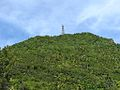 Tower at Top of Mount Scenery (6550016077).jpg