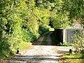 Track past Longmead, Milborne St Andrew - geograph.org.uk - 588177.jpg