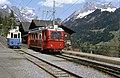 Trains Bex Villard Bretaye (5).jpg