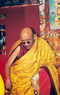Trulshik Rinpoche Buddhist Lama