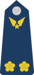 Trung Úy-Airforce 1.png