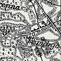 Tryputnia, 1917, map.jpg