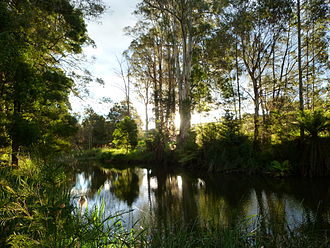 Scottsdale, Tasmania - Tuckers Creek, Northeast Park