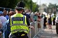 UK Civilian Police Officer MOD 45157947.jpg