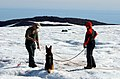 US Navy 040808-N-0331L-005 Rudy Hutchinson and Betty Ski are led by cadaver dog, Riccor during the recovery of a Navy P-2V Neptune aircraft that crashed over Greenland in 1962.jpg