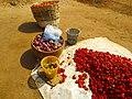 Vegetable Fruit.jpg
