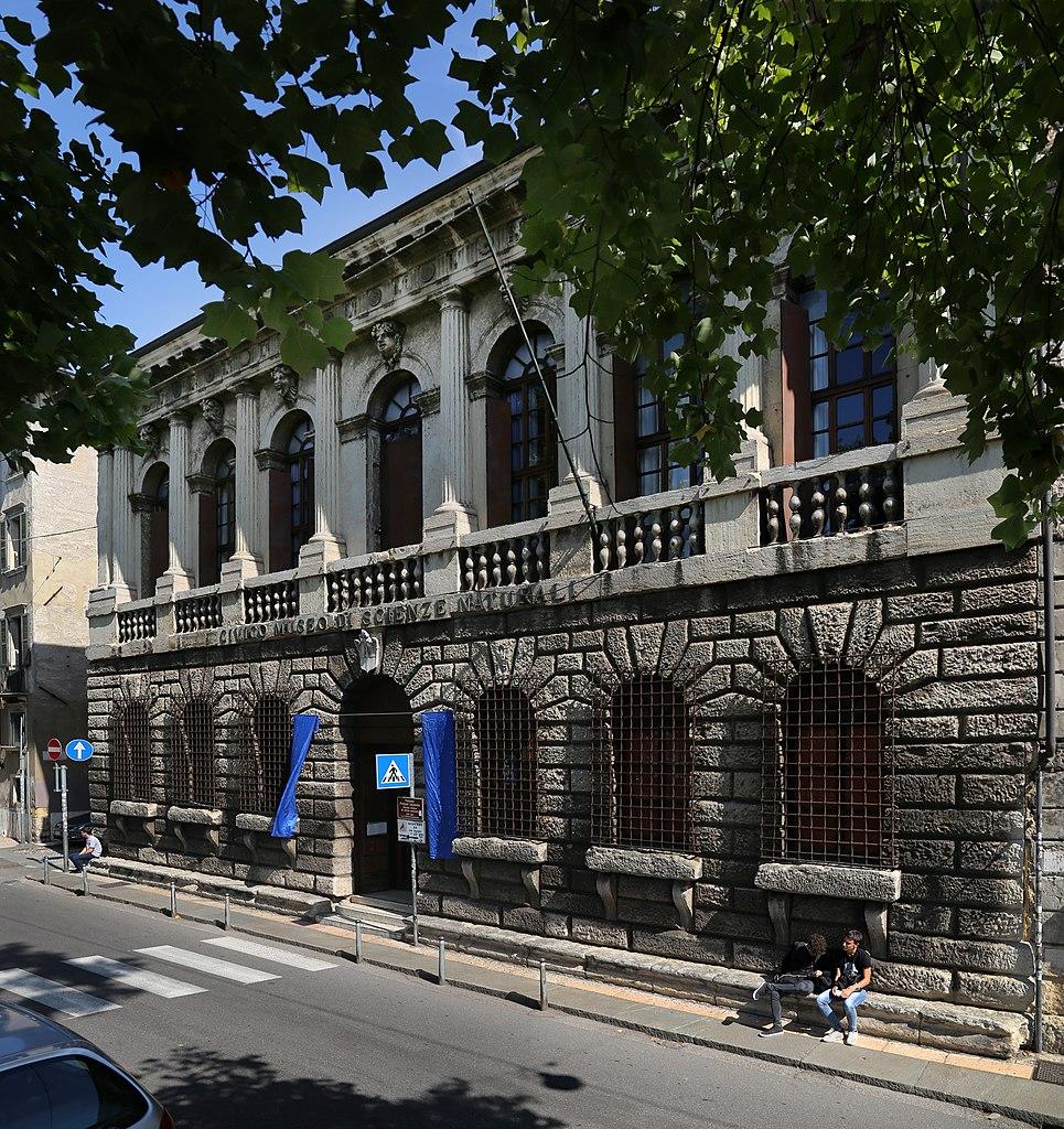 965px-Verona%2C_palazzo_pompei%2C_sede_del_museo_civico_di_storia_naturale%2C_00.jpg