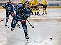 Vienna Capitals vs Fehervar AV19 -3.jpg