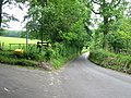 View along road towards Mounts Court Farm - geograph.org.uk - 864602.jpg