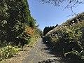 View near Aso Farm Land 8.jpg