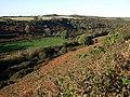 View up Cwm Gwyn - geograph.org.uk - 1552459.jpg