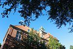 Von unterm Baum, Blick hoch zum Turm der Auguste-Viktoria-Schule (Flensburg, September 2013).JPG