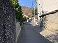 Vue du Chemin Vert (Beynost).jpg