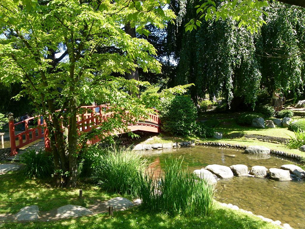 File vue sur le pont japonais jardin albert kahn jpg for Image jardin japonais
