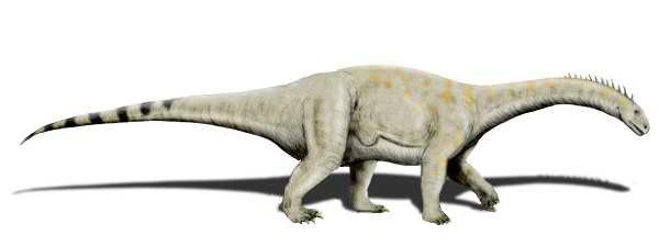 Vulcanodon NT
