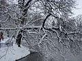 WIELKANOC 13r. Park w bajecznej zimowej szacie ,-)) 3 - panoramio.jpg