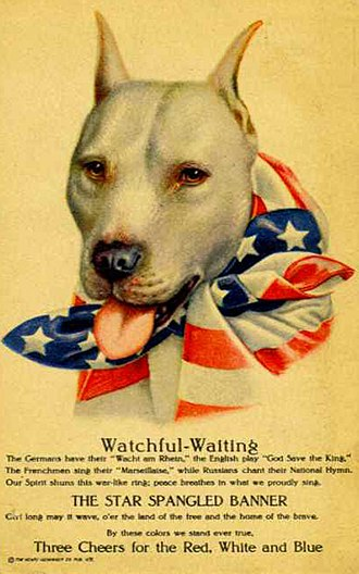American Pit Bull Terrier - World War I poster featuring a pit bull as a representation of the U.S.