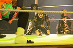 WWE Smackdown IMG 8841 (15356652215).jpg