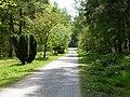 Waldweg am St. Johannes.jpg